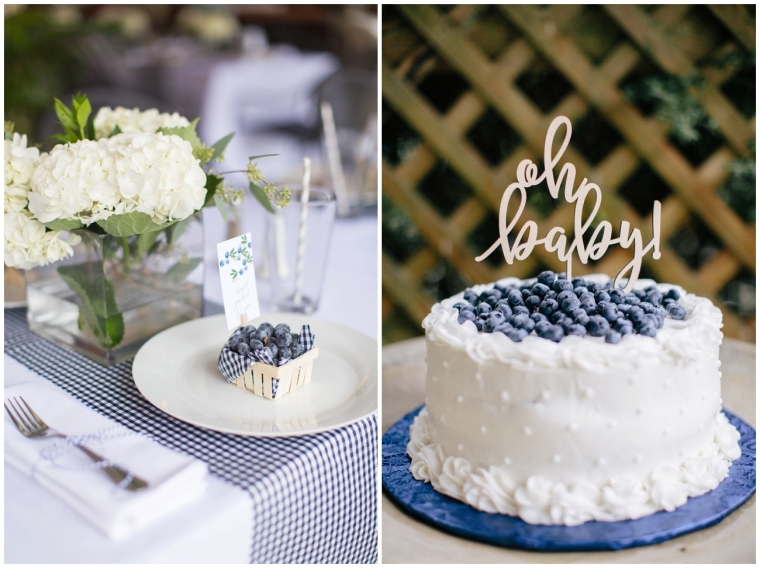 blueberry_baby_shower_1616