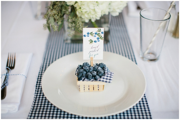 blueberry_baby_shower_1621
